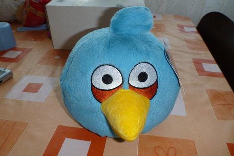 FOTKA - modrý angry