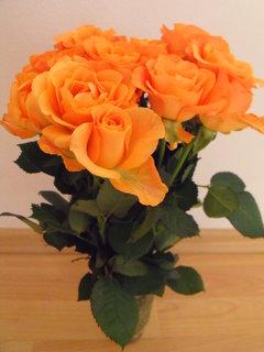FOTKA - Růže k narozeninám