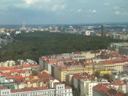 FOTKA - I v Praze je les:-)