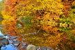 Barevné zrcadlo podzimu