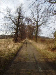 FOTKA - Cesta od Blanseku