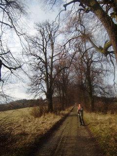 FOTKA - Cesta od Blanseku 4