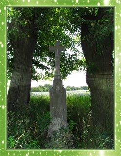 FOTKA - Záběr  s  křížkem