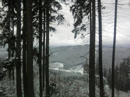 FOTKA - Lesy v Beskydech