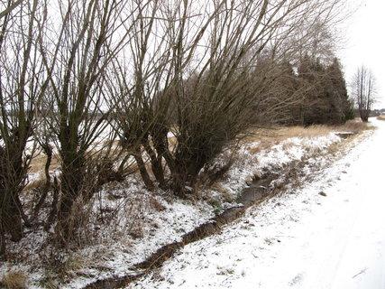 FOTKA - potůček v zimě