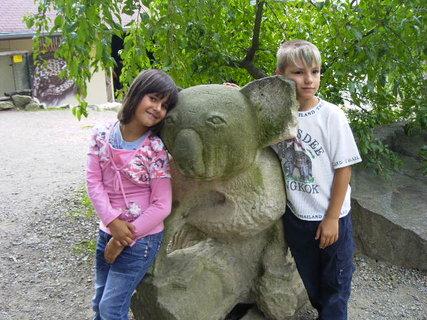 FOTKA -  v zoo 8