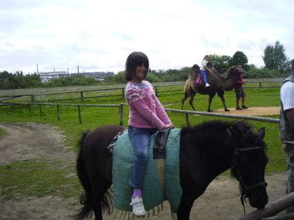 FOTKA - Verča na koníkovi