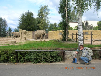 FOTKA - u slonů 2