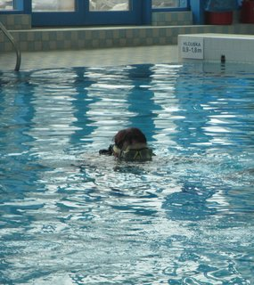 FOTKA - dnešní potápění 3