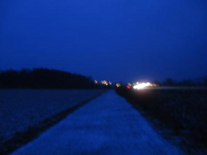 FOTKA - večerní návrat 4