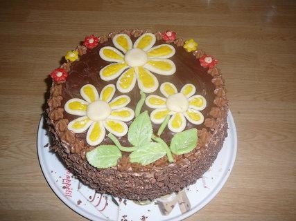 FOTKA - čokoládový dort