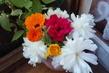 květinky v okně
