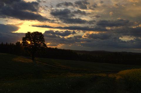 FOTKA - Oblačné ráno