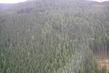 pohled z vrtulniku