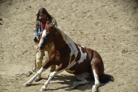 FOTKA - důvěra mezi koněm a jezdcem