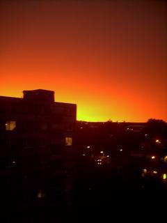 FOTKA - po bource oranzovo zluto