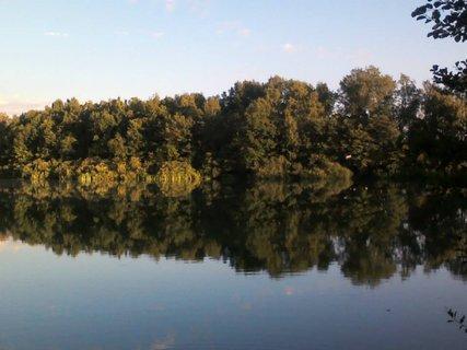 FOTKA - letní nádhera u rybníka