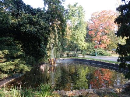 FOTKA - podzim v lázeňském parku - jedno z mnoha jezírek (Teplice v Čechách)