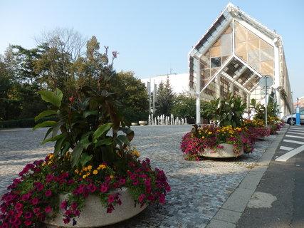 FOTKA - procházka lázeňským městem - Teplice