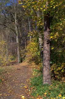 FOTKA - Podzimní pokušení