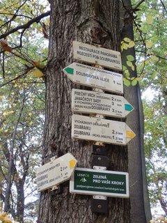 FOTKA - na Doubravku se dá dostat různými cestami (Teplice)
