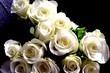 Růže6