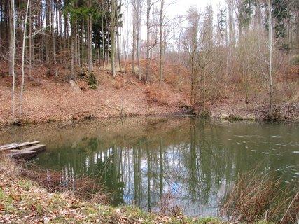 FOTKA - rybník v lese