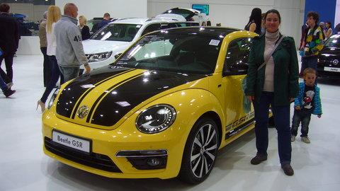 FOTKA - Beetle