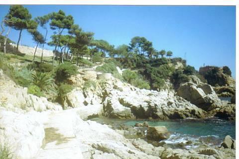 FOTKA - Pobřeží ve Španělsku