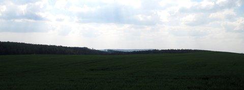 FOTKA - jedna z pole