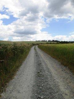 FOTKA - cestou v polích....