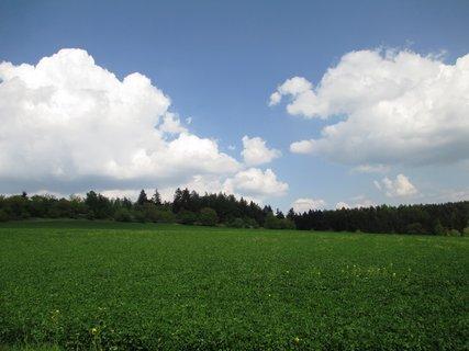 FOTKA - jedna z jarních fotek