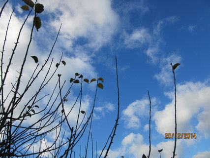 FOTKA - dvacátého -obloha
