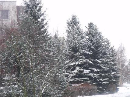 FOTKA - Zima tu kraluje 2015