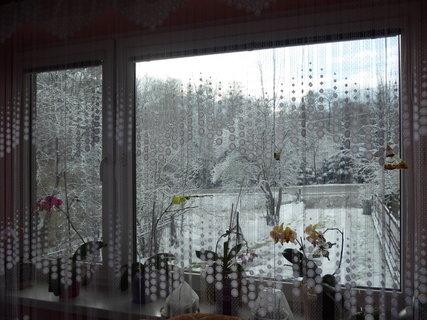 FOTKA - Pohled z okna.