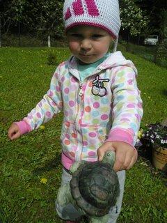 FOTKA - mám želvičku,,