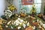 podzimní expozice