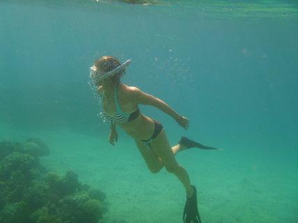 FOTKA - pod vodní hladinou