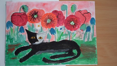 FOTKA - Spokojená kočka v poli