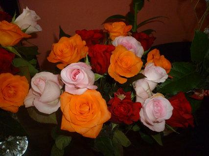 FOTKA - Krása růží.