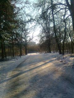 FOTKA - Zima ve městě nemusí být škaredá