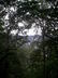 prochazka a Boskovice pres stromy
