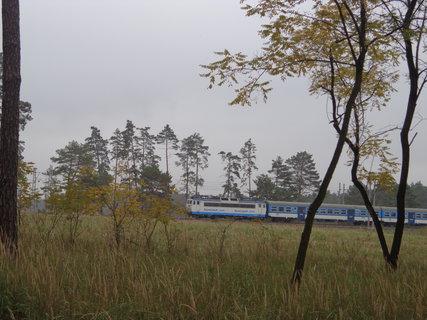 FOTKA - Vlak v lese