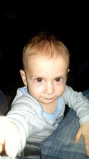 FOTKA - Vouček