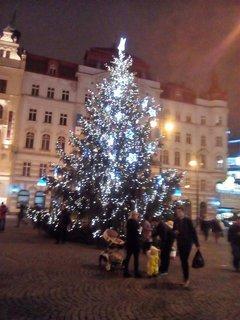 FOTKA - Vánoční stromeček.