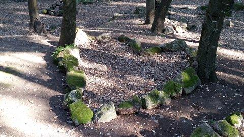 FOTKA - Skryte srdce Zarskeho lesa