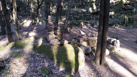 FOTKA - Utajene zakouti Zarskeho lesa