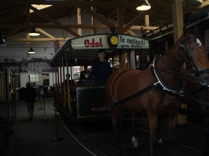 FOTKA - Nejprve tahali vůz koně