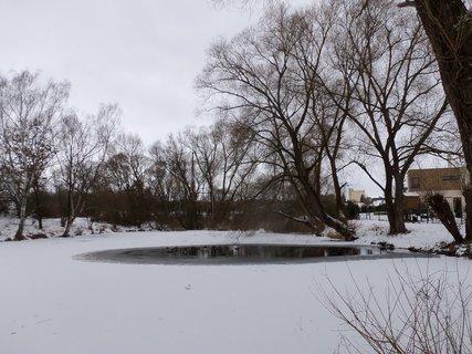 FOTKA - rybníček