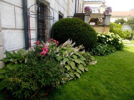 FOTKA - Zahrada v zám. parku Častolovice